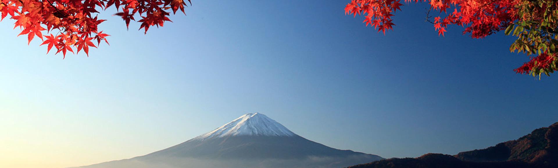 世界中から日本に訪れる観光客へ